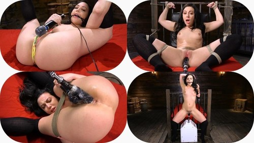 Whitney Wright - Fresh Meat Whitney Wright Is Bound And Fucked (2019/FuckingMachines.com/HD)