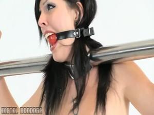 Mb275 - Bondage and discipline