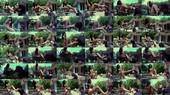 Bratty Bikini Girl Foot Worship - Taylor