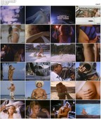 Playboy Video Centerfold: Lynne Austin (1986)